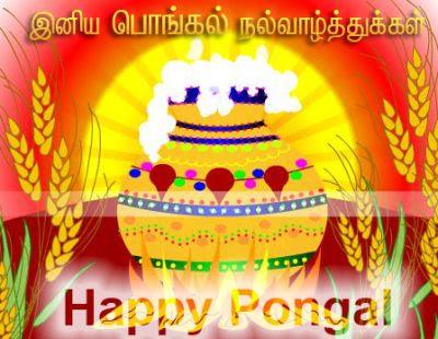 guru-pongal+greetings++%2812%29.jpg